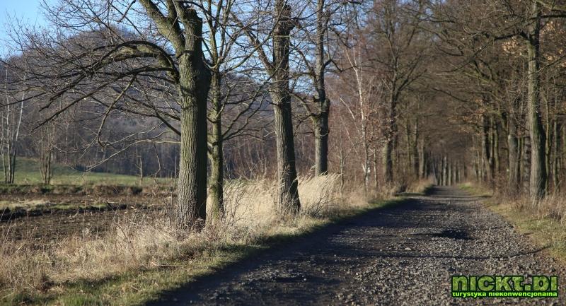 nickt.pl proboszczow ostrzyca spitzberg 508 m  002