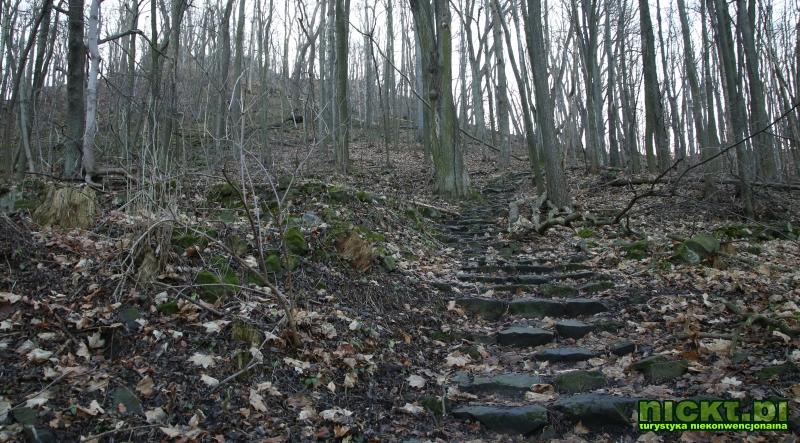 nickt.pl proboszczow ostrzyca spitzberg 508 m  004