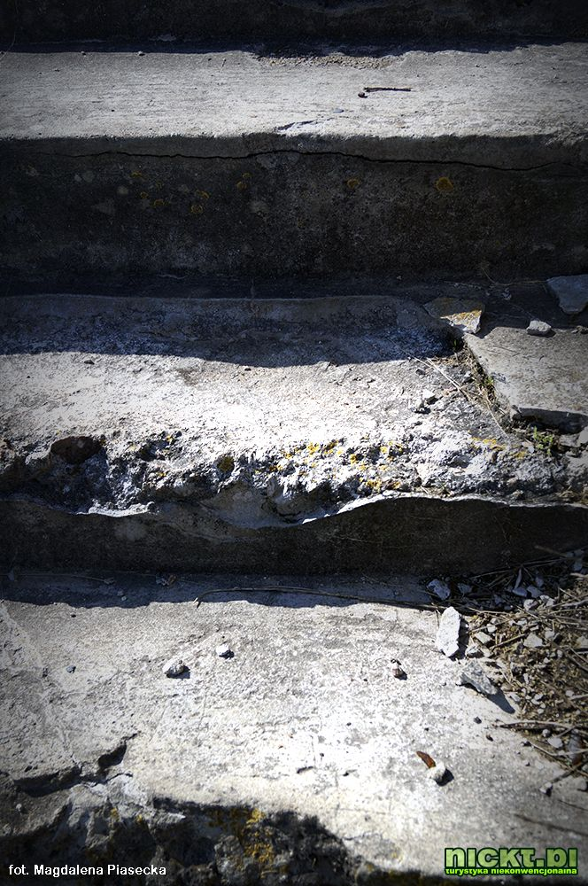 nickt pl osowiec twierdza magdalena piasecka 07