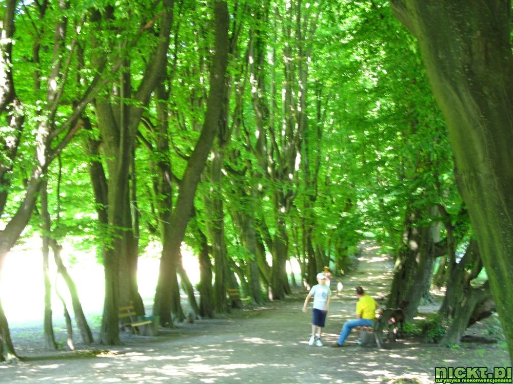 nickt_pl muzeum historii miasta zespol palacowo parkowy przeworsk 0003
