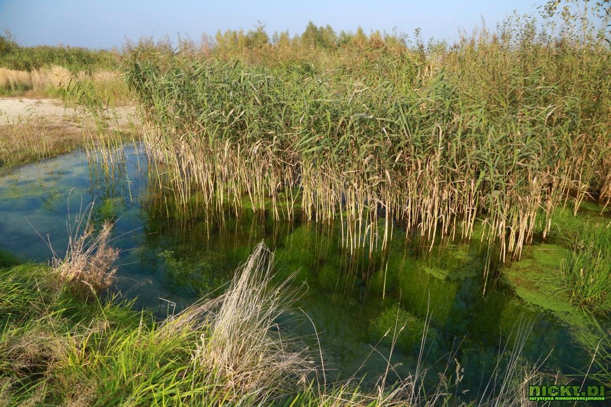 nickt_pl nowogrodziec zebrzydowa czerna halda kopalnia surmin kaolin wyrobisko jezioro staw woda bialy piasek 012