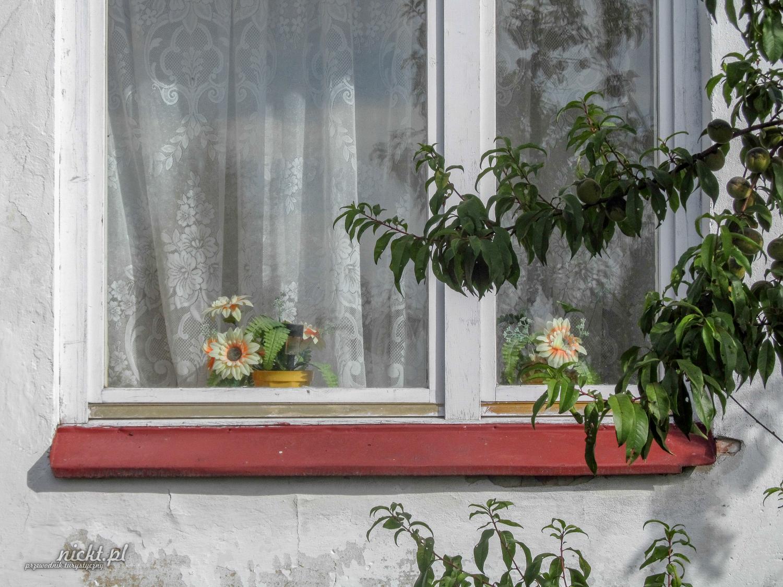 agroturystyka gospodarstwo agroturystyczne lesniczowka siensko slupia jedrzejowska anna sygut przemyslaw woznica nickt (11)